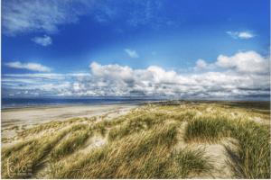 instaspots Terschelling voor je mooiste foto's op het middelste eiland, tussen de Waddenzee en Noordzee in